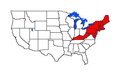 Clovis Point Map